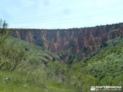 Carcavas de Alpedrete de la Sierra y Meandros del Lozoya;senderismo madrid:caminatas por madrid